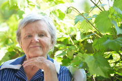 Senior woman smiling and dreaming in garden. Royalty Free Stock Photo