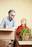 Senior woman with spider plant Stock Images