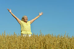Senior woman in summer field Royalty Free Stock Photos