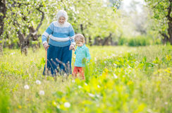 Senior woman supported by great grandson walking in orchard Royalty Free Stock Photography