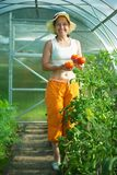 Senior woman with tomato Royalty Free Stock Photos
