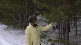 Senior woman touching and sniffing branch pine tree during winter walking. In coniferous forest. Adult woman walking in winter forest stock video