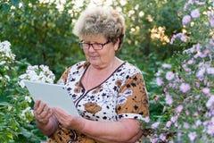 Senior woman using digital tablet in home garden Stock Photo