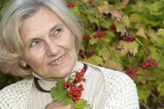 Senior woman in  viburnum Royalty Free Stock Image