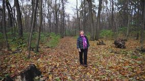 Senior woman walking in the autumn woods, she spends her free time. stock video