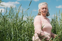 Senior woman walking in countryside spring Stock Image