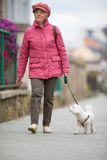 Senior woman walking her little dog on a city street Stock Images