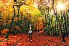 Free Senior Woman Walking, Hiking, Woods Stock Photography - 171393782