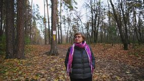 Senior woman walks in autumn forest, looking at the tops of the trees. stock video