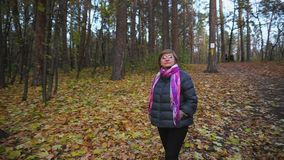 Senior woman walks in autumn forest, looking at the tops of the trees. stock video footage