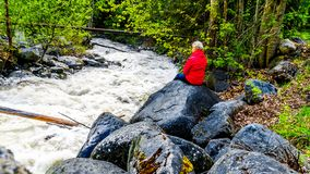 Senior woman watching the turbulent waters of Mcgillivray Creek between the towns of Whitecroft and Sun Peaks. In the Shuswap Highlands of the Okanagen region stock photography