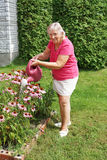 Senior woman watering flowers Royalty Free Stock Images