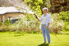 Senior woman watering lawn by hose at garden. Gardening and people concept - happy senior woman watering lawn by garden hose at summer stock photos