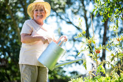 Senior woman watering plants with watering can in garden Royalty Free Stock Images