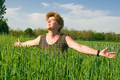 Senior woman in a wheat field Stock Image