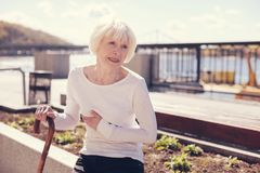 Senior woman wincing because of pain in right subcostal area. Nagging pain. Thin white-haired elderly woman holding a cane and touching her right subcostal area Royalty Free Stock Image