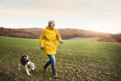 Free Senior Woman With Dog On A Walk In An Autumn Nature. Royalty Free Stock Photos - 103380278