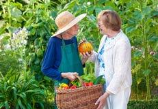 Senior Women at the Farm With Basket of Veggies. Royalty Free Stock Photos