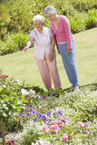 Senior women in garden Stock Photos