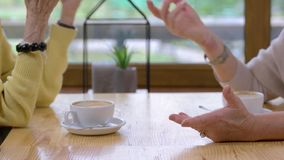 Senior women holding hands. stock footage