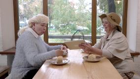 Senior women holding tablet. stock footage