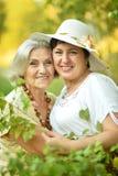 Senior women resting at  park Stock Images