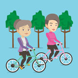 Senior women riding on bicycles in the park Royalty Free Stock Photos