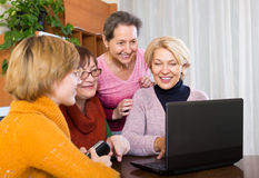 Senior women working with notebook. Positive senior female friends working with notebook using wifi Stock Photo