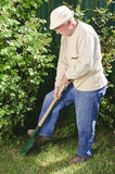 Senior working garden Stock Images