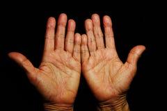 Senior& x27; изолированные руки s, Стоковое Фото