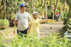 Senioren, die Arbeit besprechen lizenzfreies stockbild