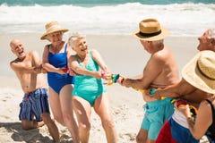 Senioren, die Tauziehen am Strand spielen Stockfotos