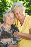 Seniors Stock Images