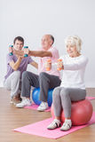 Seniors and active life. Happy exercising seniors and active healthy life Royalty Free Stock Photography