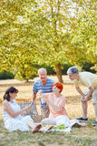Seniors as friends making a picnic Stock Images