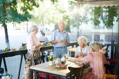 Seniors concentrated on card game Stock Images