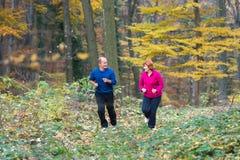 Seniors couple jogging Stock Photo