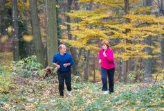 Seniors couple jogging Royalty Free Stock Photos
