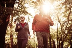 Seniors couple jogging together in park. royalty free stock photography