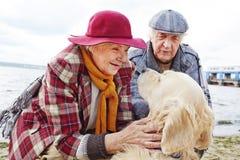 Seniors with dog Stock Photography