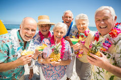 Seniors drinking cocktails stock photo