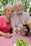 Seniors Enjoying Picnic Stock Photos