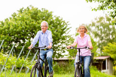 Seniors exercising with bicycle Stock Photos