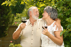 Seniors in the garden Stock Photography