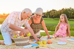 Seniors with grandchild having picnic. People and fruit basket. Eating habits for longevity stock image