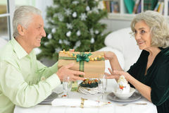 Seniors have a Christmas dinner Royalty Free Stock Image