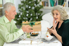 Seniors have a Christmas dinner Royalty Free Stock Photos