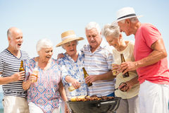 Seniors having barbecue Royalty Free Stock Photos