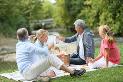 Seniors having a pic-nic outdoors Stock Images