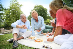 Seniors having a pic-nic on a sunny day Stock Photos